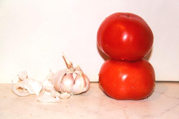 buterbrody-s-chesnokom-i-pomidorami